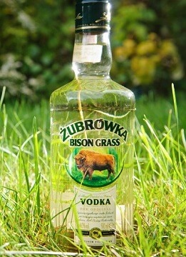 Бутылка Зубровки