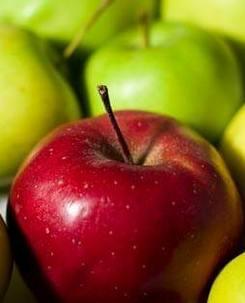 Яблоки для приготовления сидра