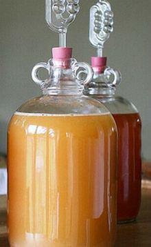 Брожение яблочного сока