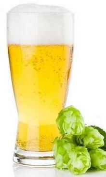 Свежее пиво и хмель