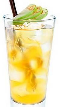 Коктейль Виски с соком