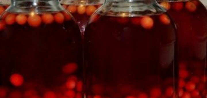 Сделать вино из брусники в домашних условиях 13