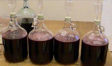 Брожение вина из синего винограда